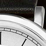 Swatch: Stainless Steel (selected)