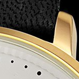 Swatch: Black Strap with Gold