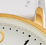 Swatch: White Strap with Gold