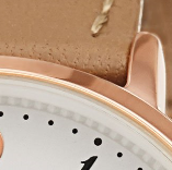 Swatch: Brown Strap with Rose Gold
