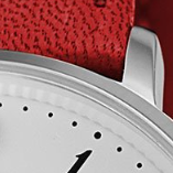 Swatch: Red Strap with Silver