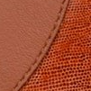 Swatch: Cognac Leather (selected)