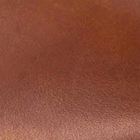 Swatch: Cognac (selected)