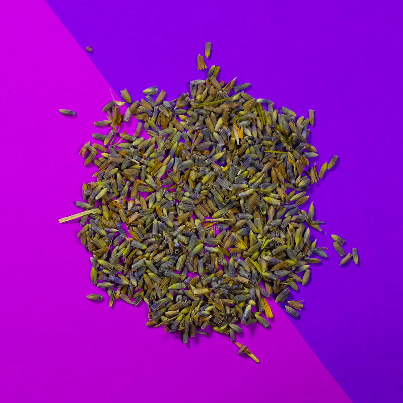 Lavender on a purple background