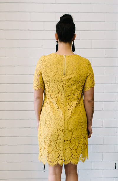 Penelope Lace Dress - Mustard