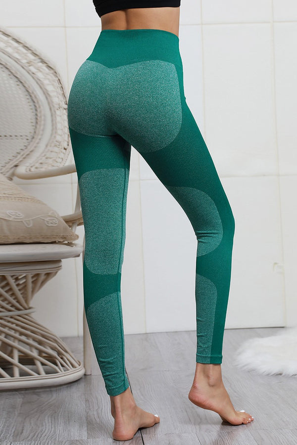 SIERRA SEAMLESS HIGH WAIST TIGHTS FOREST GREEN - CHICKABERRY BOUTIQUE Australia Womens