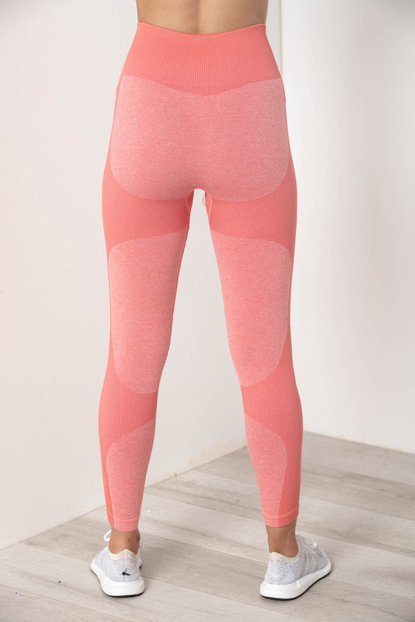 SIERRA SEAMLESS HIGH WAIST TIGHTS CORAL PINK - CHICKABERRY BOUTIQUE Australia Womens