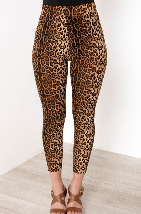 IN THE JUNGLE LEOPARD TIGHTS - CHICKABERRY BOUTIQUE Australia Womens