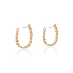 14k Gold Casandra Hoops