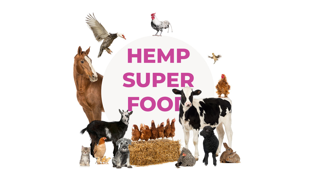 Hemp Super Food Hemppet