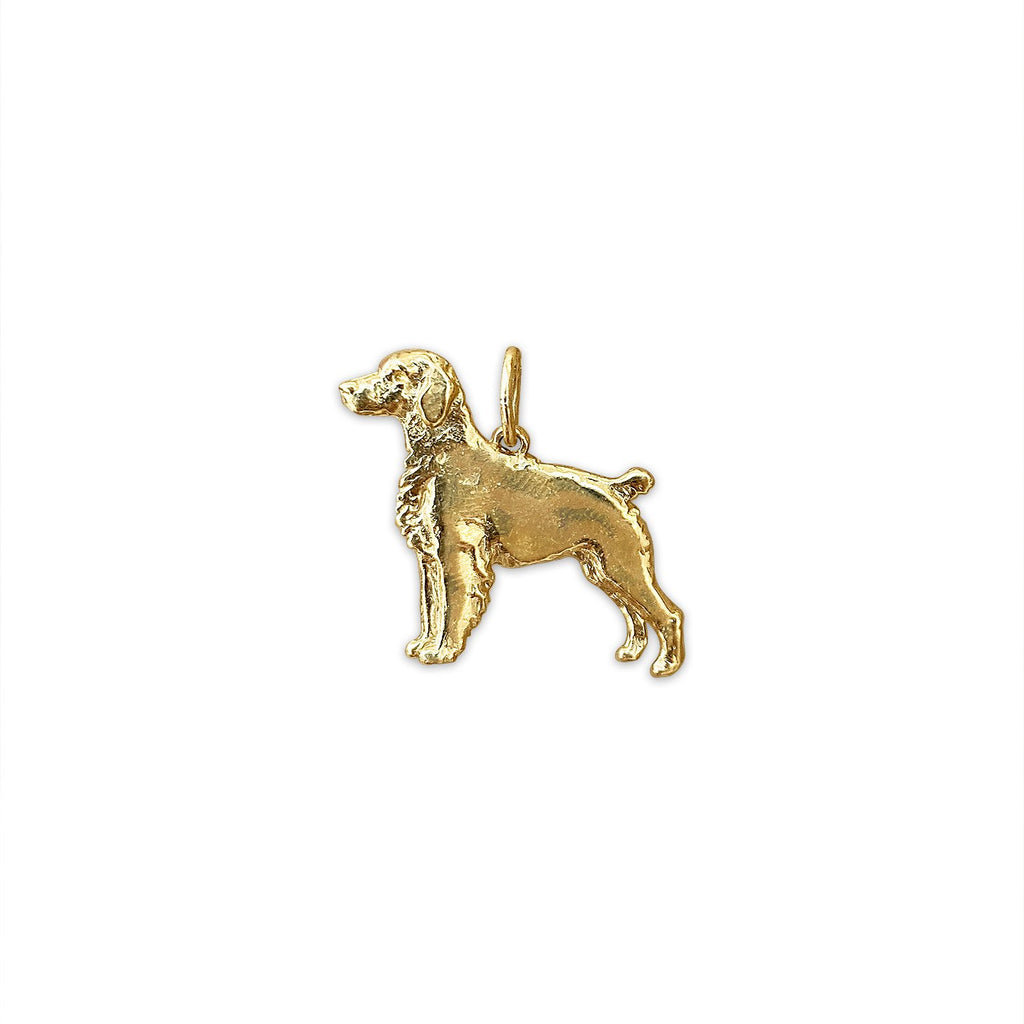 Vintage Golden Retriever Charm