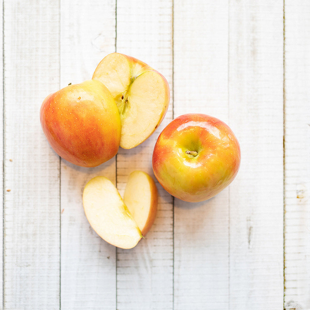 Healthy apples dog food ingredient