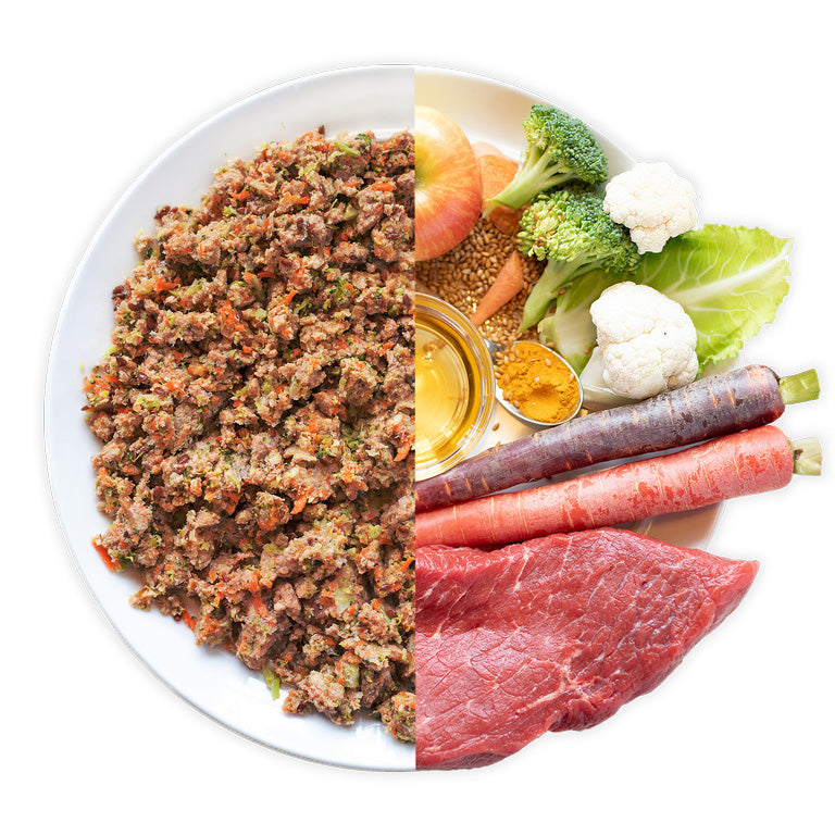 Tasty beef dog food recipe
