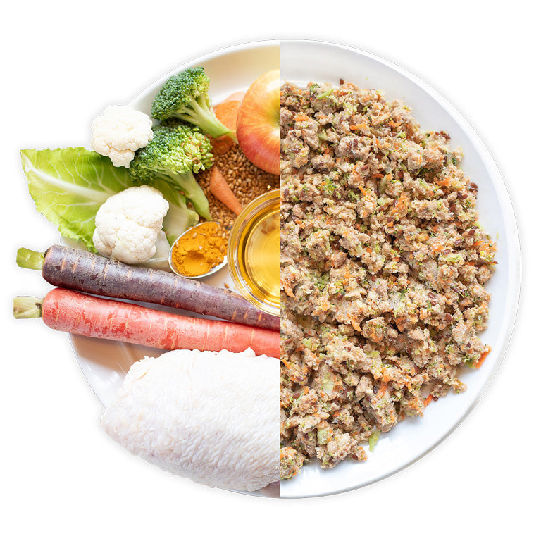 Tasty turkey dog food recipe