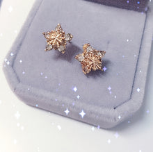 Load image into Gallery viewer, Rose Gold Stars Stud Earring