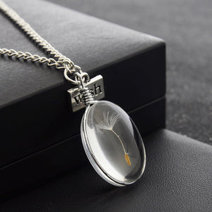 Natural Dandelion Seed Specimen Glass Adhesive Sheet and Wish Tag Oval Time Gem Necklace