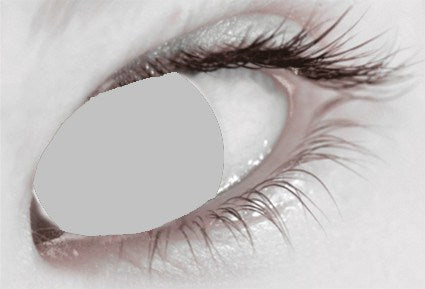 Mesmereyez 1 Day Contact Lens - Blind Grey
