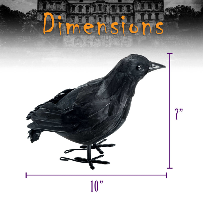 "2 Realistic Large 10"" Feathered Black Crows Prop Decoration - Scary Standing Flying Birds, Blackbirds, Ravens with Feather Wings"