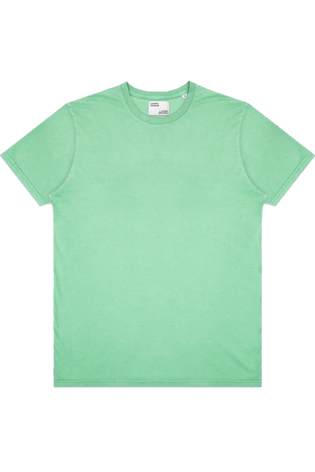 Light Organic Tee - Faded Mint - Colorful Standard