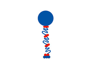 Curly Balloon Column  *** Pick-up or Delivery only *** - USA Party Store