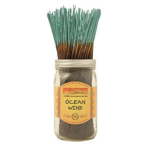 Incense - Ocean Wind - USA Party Store