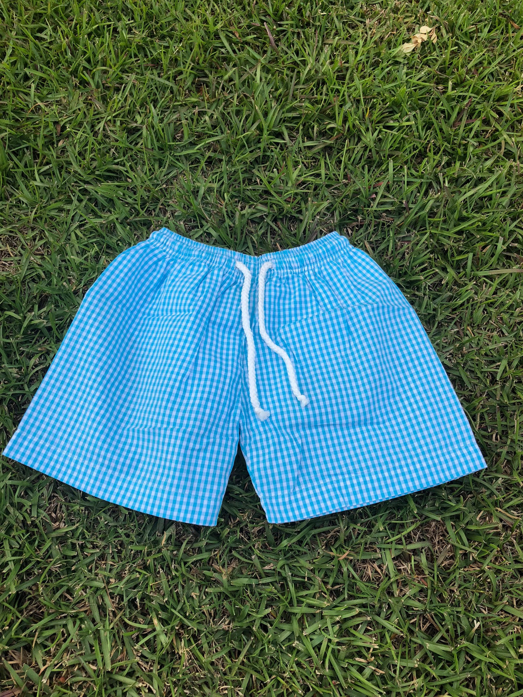 Aqua Gingham Trunk Swim Suit