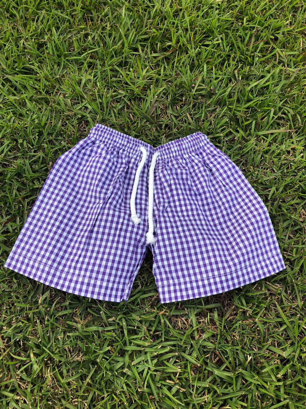 Purple Gingham Trunk Swim Suit