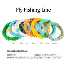Load image into Gallery viewer, GENERAL Fly Fishing Line, 300M/100FT - GOTURE