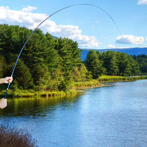 Seeker Telescopic Fishing Pole Plus Free Top 3 Segment Tip - GOTURE