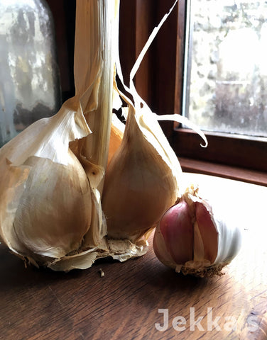 Jekkapedia: Garlic
