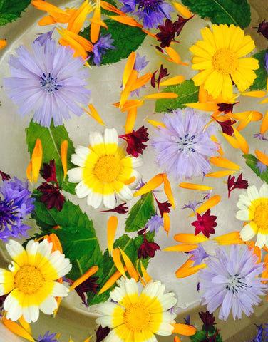 Edible Flowers, 10th August