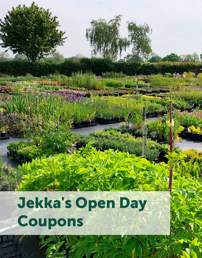 Jekka's Open Day Coupons - Friday 5th June