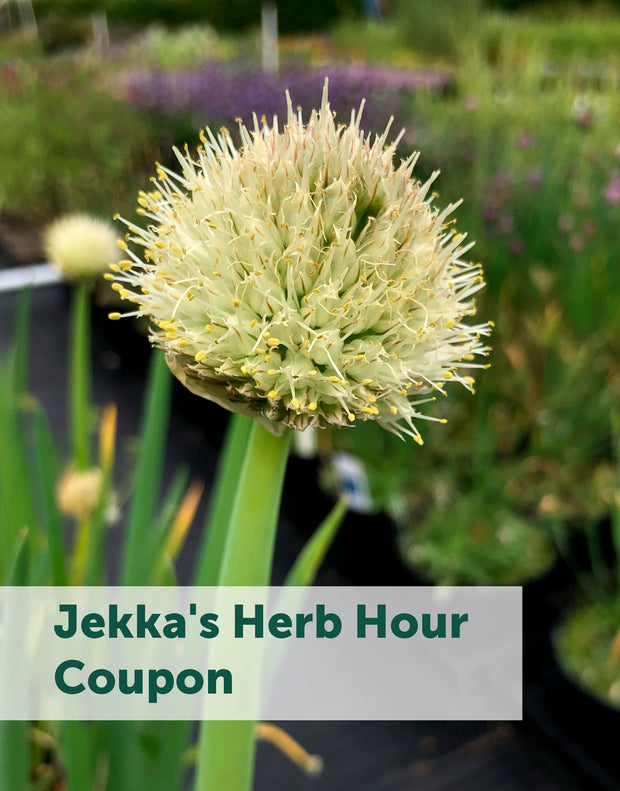 Jekka's Herb Hour Coupons