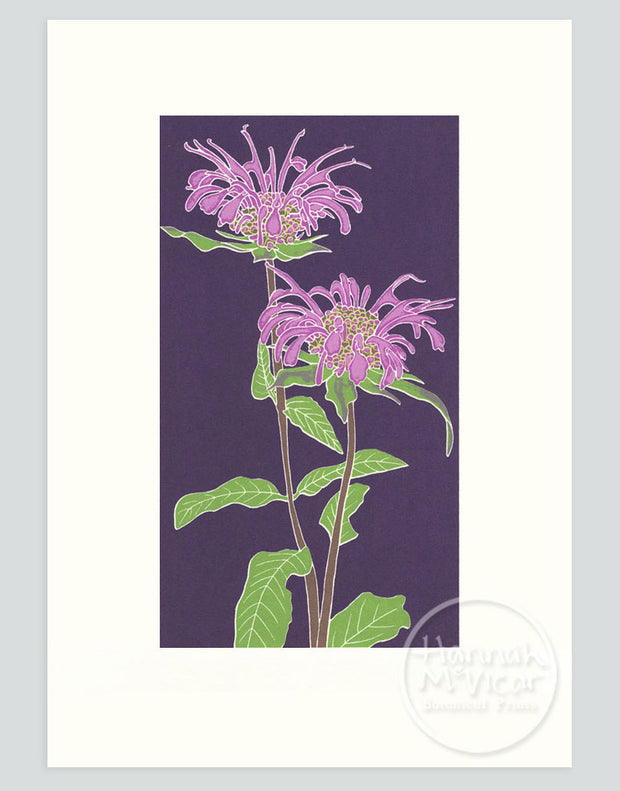 Bergamot Screenprint