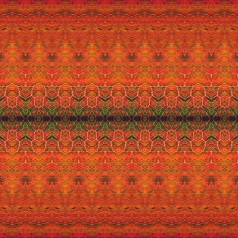 Ethnic Nature Orange/Red P