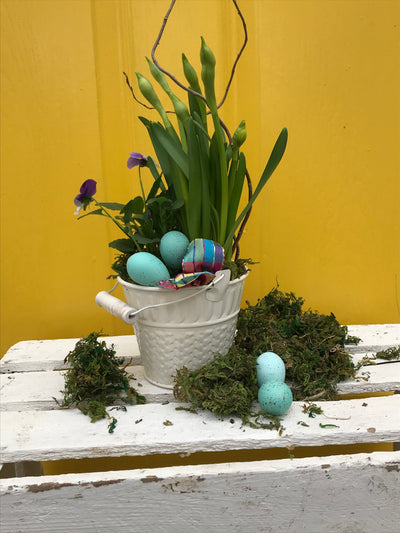 Easter Cheer, 4 inch potted arrangement