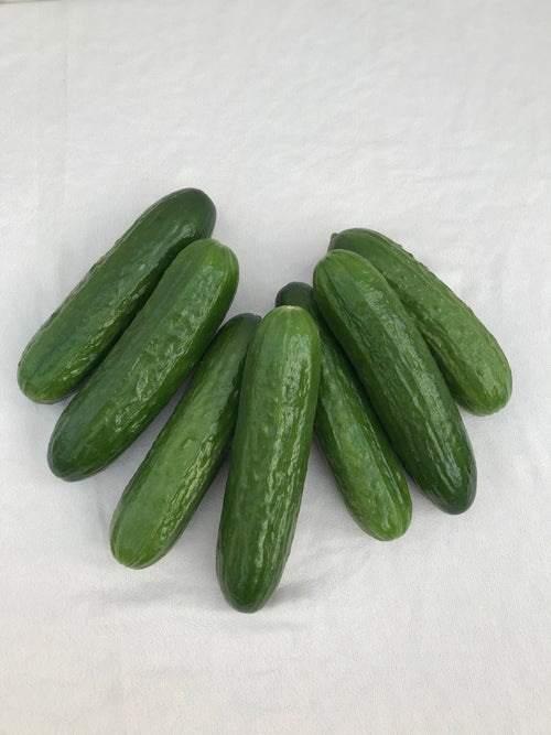 Mini cucumbers, 600 grams