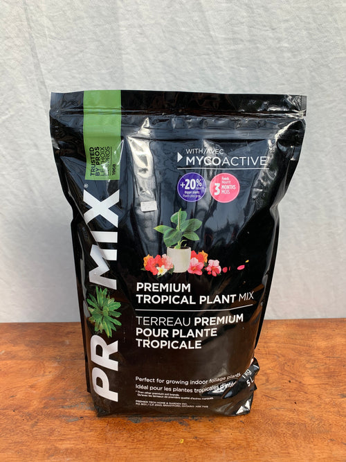 Premium Tropical Plant Mix