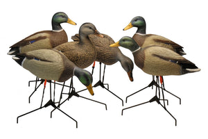Bigfoot Legacy Field Mallards with Motion Stakes