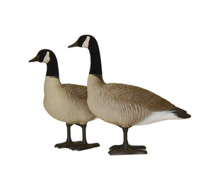 Bigfoot™ Canada Bull Decoys 4Pk. 2 Big Bull, 2 Little Bull.