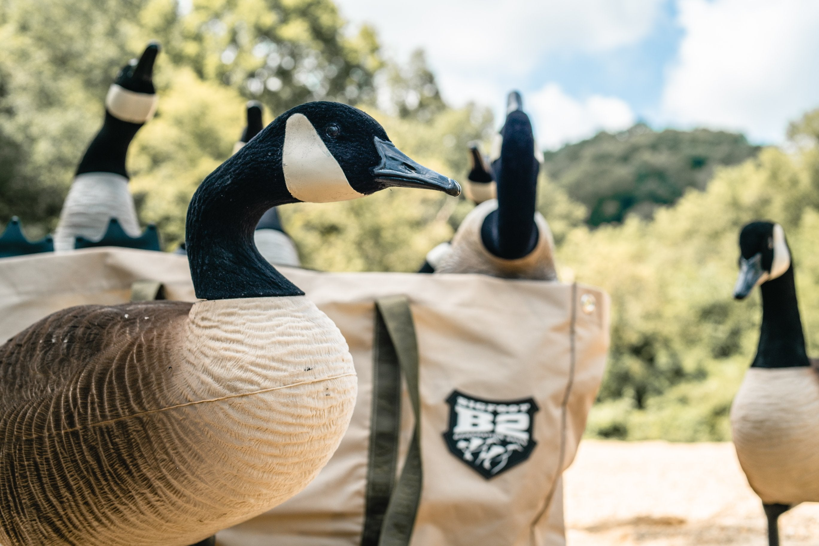 B2™ Fully Flocked Variety Goose Decoys 6 Pack with B2™ 6 Field 6-Slot Decoy Bag