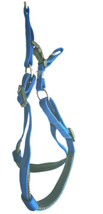 Padded Harness (Blue or Black)