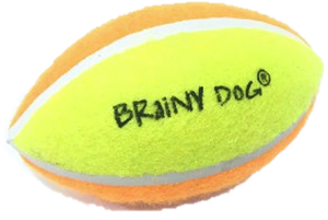 Rugby Ball for Dogs