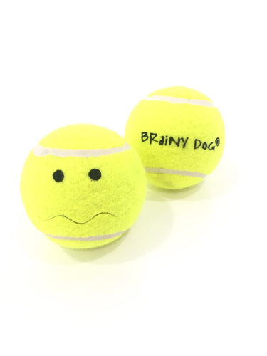 Tennis Puzzle Toy Ball for Dogs