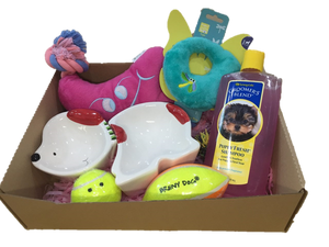"""Fun Party"" Woof! Box (For girls)"
