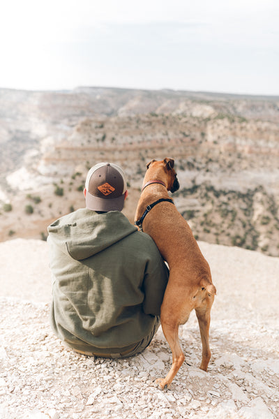 Modish Wanderer - 5 Tips For Wandering Outdoors With Your Pup - Man and Dog