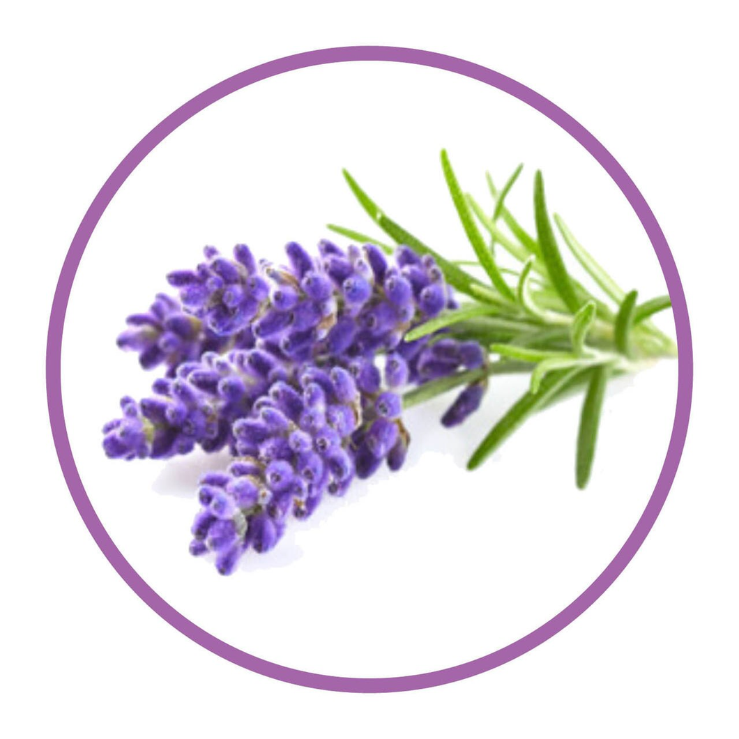 Flavour Natural 30ml - Lavender
