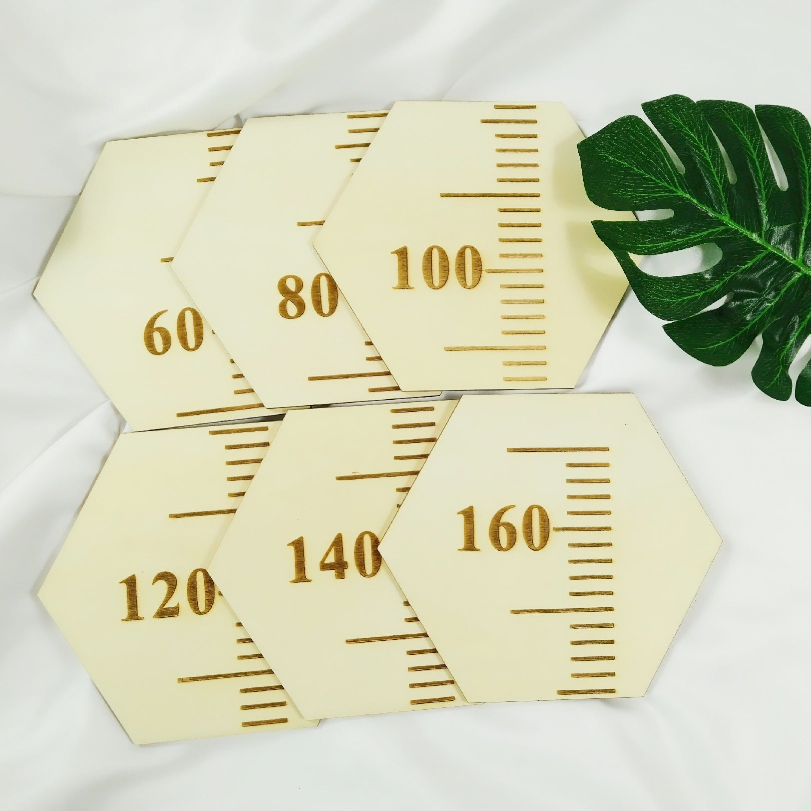 Wood Height Chart in Hexagon