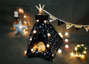 Pet Teepee in Galaxy + Thick Cushion