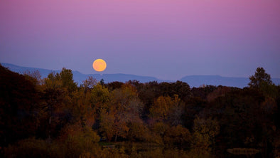 WHY THE HARVEST MOON IS THE PERFECT TIME TO RESET YOUR INTENTIONS